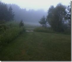 Foggy morning_0001