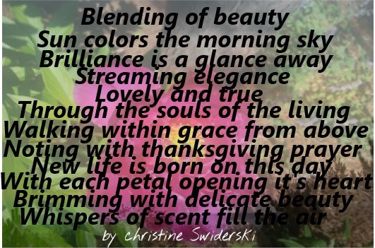 Blending of beauty