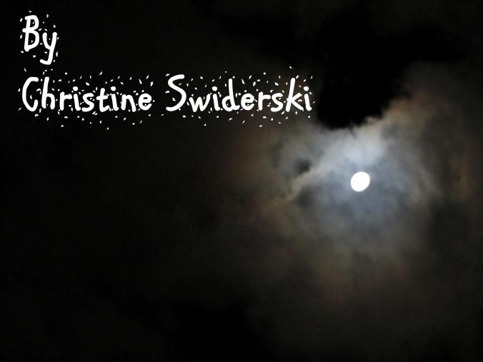 logo-by-christine-swiderski